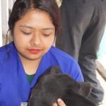 DAS vet, Dr. Shivani Pradhan