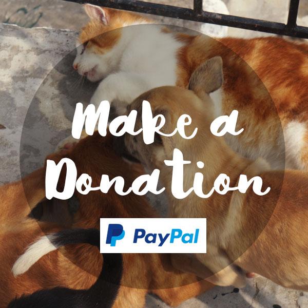 make_a_donation_sidebar