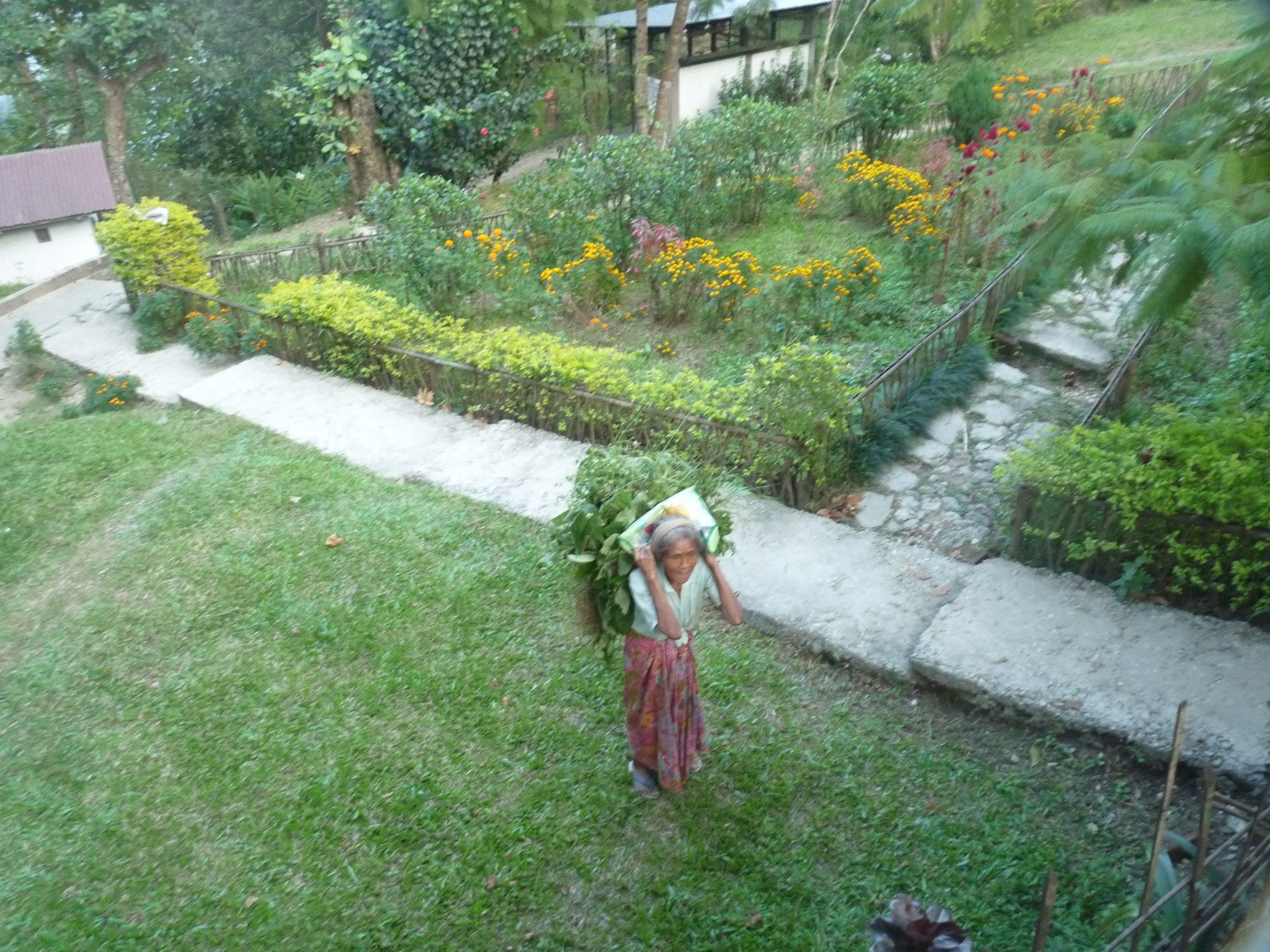 Gardens at KAS 2
