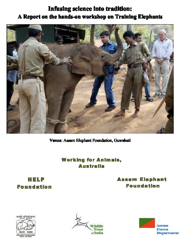 mclean-report-2011