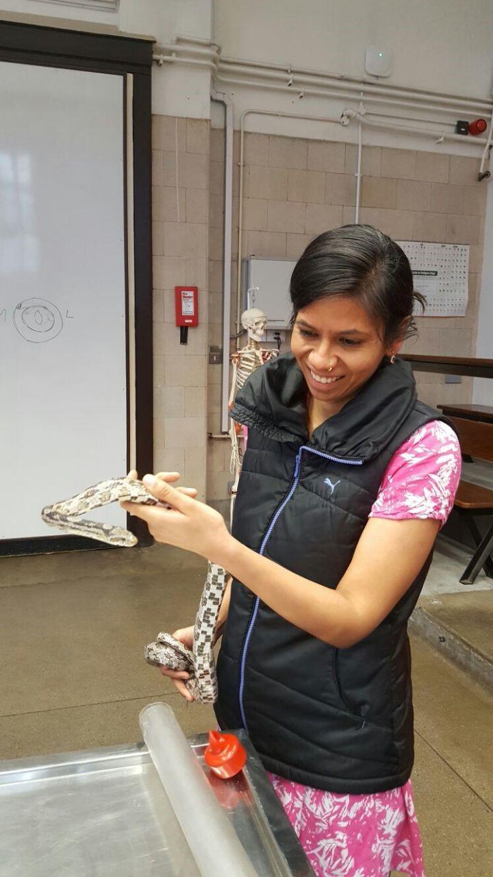A new vet for darjeeling animal shelter 1