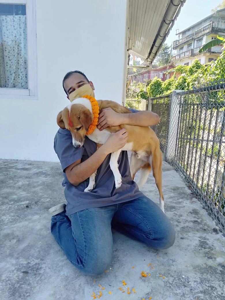 Vet Mihir hugging a dog on Kukur Tihar, a festival dedicated to honour dogs